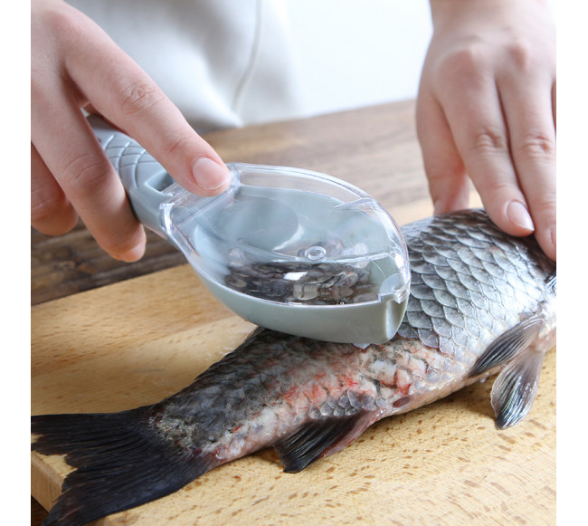 Rabot à poisson